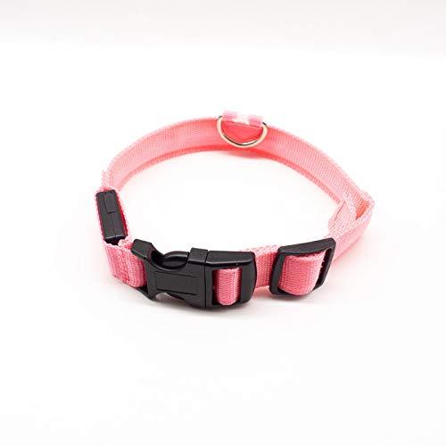 WWWL Collar de perro con carga USB LED para perros y cachorros de coche para perros y cachorros de coche con batería de botón rojo