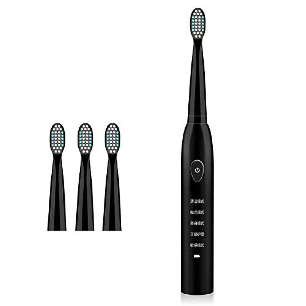 印象的なちなみにアーティファクト4つの取り替えのブラシヘッドUSBが付いている電動歯ブラシは5つのモードを満たしました,Black