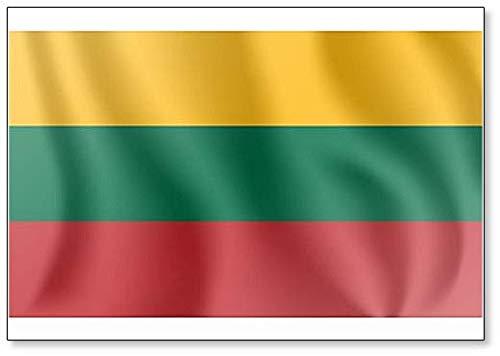 Kühlschrankmagnet, Motiv: Flagge der Republik Litauen