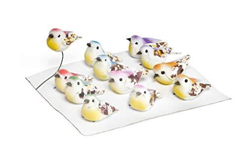 12 mini-oiseaux