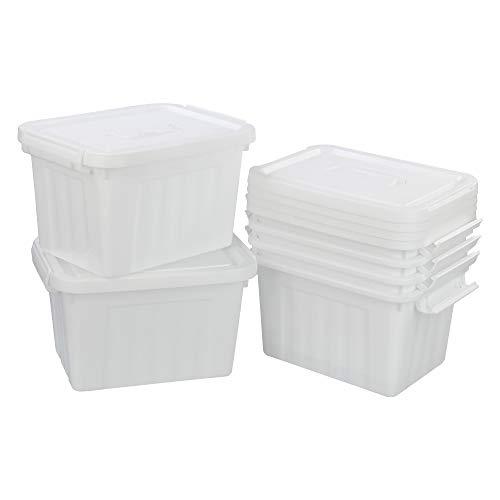 Cadine Caja de almacenamiento de 6 litros, caja de plástico con cierre y tapa (6 litros), color blanco