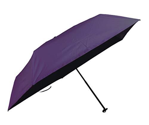 エバニュー(EVERNEW) EBY054 U.L. All weather umbrella Purple