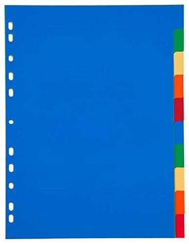 Idena 300230 - plastic register DIN A4, 10-delig, meerkleurig