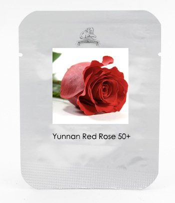 KK 1 Grand emballage, 50 graines, Yunnan Red Rose Cut Flower Seed # NF418