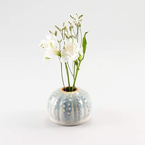 Georgetown Pottery Handgefertigte Seeigel Ikebana Vase, Knospenvase, Luftpflanzentopf, Kerzenhalter, Elfenbein und Blau Oribe, Made in USA, Porzellan-Keramik