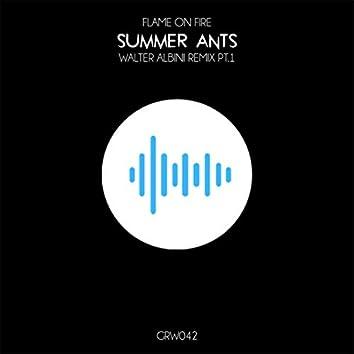 Summer Ants (Walter Albini Remix)