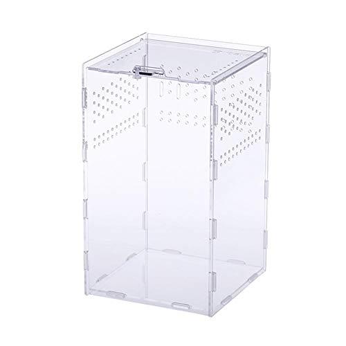 Draulic Acryl Reptilien Zucht Box Insektenfütterungsbox für Schlangenspinne Eidechse Skorpion Hundertfüßer