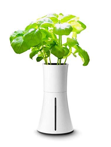 BOTANIUM(ボタニアム) 水耕栽培キット スモークホワイト