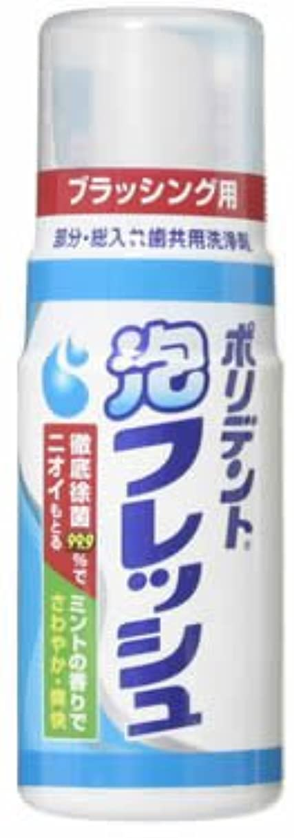 適応するガード甘やかすポリデント 泡フレッシュ 125ml
