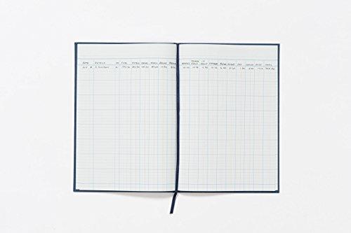 Guildhall Cuenta Libro 31 de la serie 16 columnas de efectivo 80 298x203mm Leaf - Ref 31/16