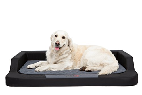 Hobbydog Hundebett Medico Standard  xxl - 120 x 80 cm Schwarz - Grau mit Ortopädische Viscomatte Bett Ruheplatz Schlafplatz Hundebett Hundesofa Orthopädisch