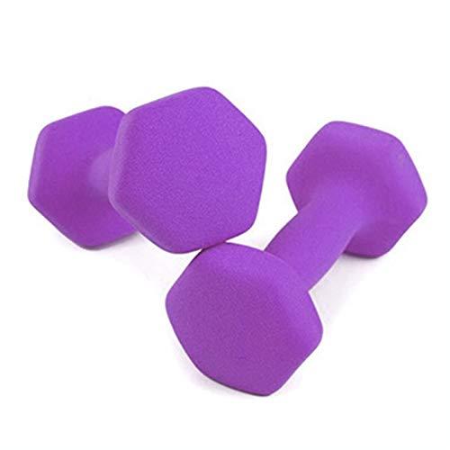 LUSTAR Un Par de Mancuernas, para Ajuste Muscular General y Peso del Brazo Delgado 1 Kg 1,5 Kg 2 Kg 3 Kg 4 Kg 5 Kg Morado,Purple-4KG