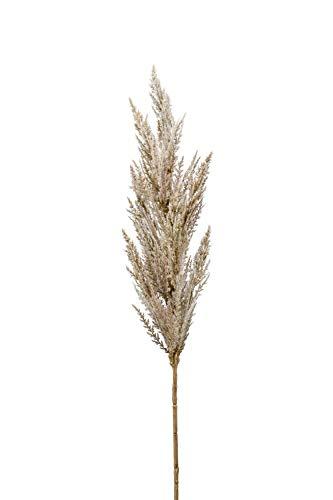 artplants.de Rama Artificial de Hierba de la Pampa con panícula BATERNO, Crema, 90cm - Hierba Decorativa - Hierba Falsa