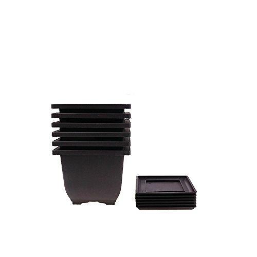 6PCS/Pack Retro Style Deep Square Small Bonsai Training Pots with Tray, Mini Plastic Mocha Garden Flower Pot 5'