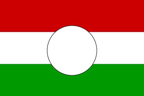 magFlags Drapeau Large Hungarian Revolution Flag of 1956   Hungarian Revolution of 1956 with The Coat of Arms Cut Out   Drapeau Paysage   1.35m²   90x150cm
