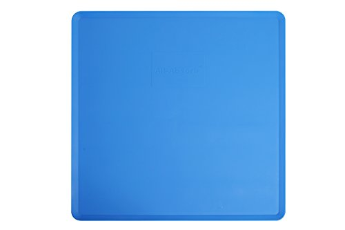 All-Absorb A10 Silicone Pad Holder