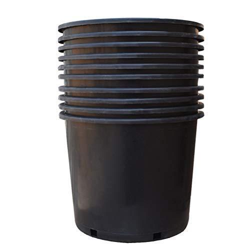 10 gallon pot - 8