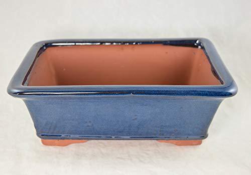 Calibonsai Rectangular Bonsai/Cactus & Succulent Pot 12'x 9'x 4' - Dark Blue Stain Glazed