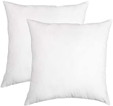 Top 10 Best pillows for sleeping 2 pack Reviews