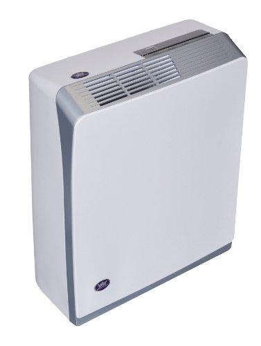 Prem-I-Air - Deumidificatore con modalità asciuga biancheria, serbatoio da 3,5 l