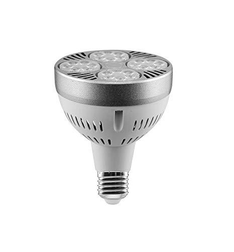Ampoule LED 35 W PAR30 E27 pour spot 2 975 lm Blanc froid