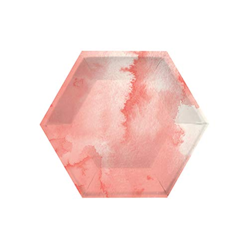 Creative Converting Watercolor Wash Pink Dessert Plates, 8'