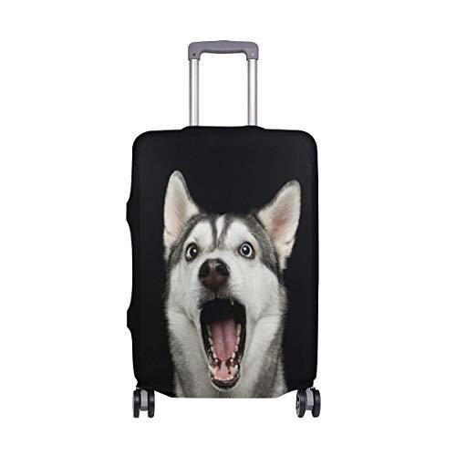 Sorprendido Perro Siberiano Husky Viajeros Elección de Equipaje de Viaje con Ruedas giratorias...