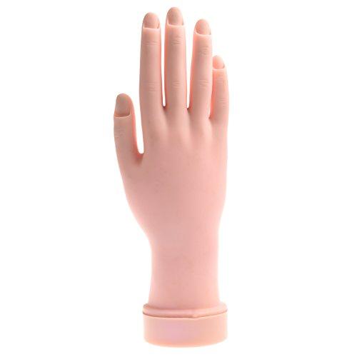 SODIAL(TM) Proth¨¨se de main pour la formation de dessiner les ongles