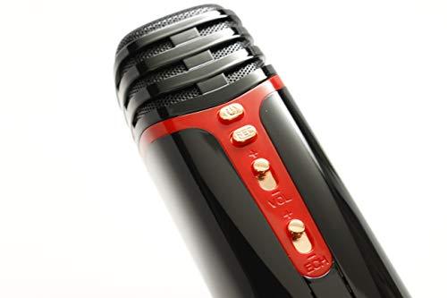 Indigi Handheld Portable Wireless Compatible with Bluetooth KTV Karaoke Microphone & Speaker