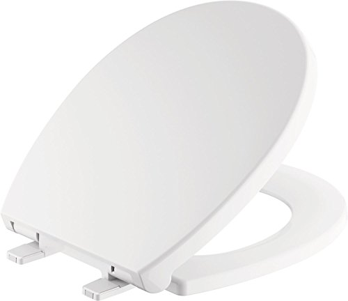 Delta Faucet Morgan Round Front Slow-Close White Toilet Seat with Non-Slip Seat Bumpers, White...