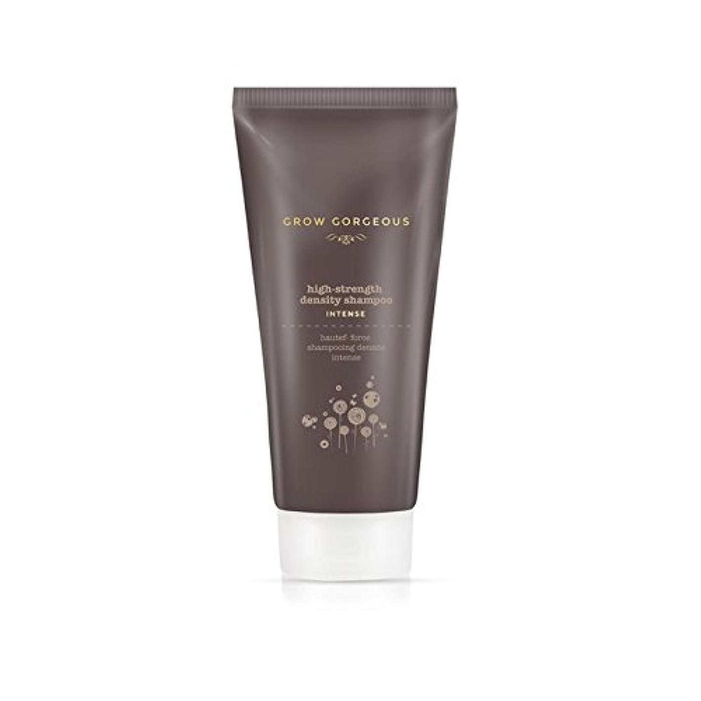 コーラス敬意記憶に残る強烈なゴージャスな髪密度のシャンプー(190ミリリットル)を育てます x4 - Grow Gorgeous Hair Density Shampoo Intense (190ml) (Pack of 4) [並行輸入品]