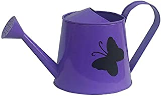 Railing Planter Impex 1 Butterfly 2 litres Metal planters Round Watering Can - Rust Free Home Decor Gifting, Garden, Garde...