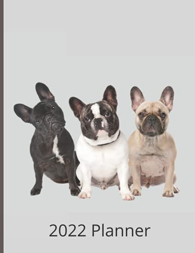 2022 French Bulldog Planner - Daily Weekly Monthly: Large Size Diary and Organizer including Yearly Overview, Monthly Planner and Weekly Planner with ... plus room for notes and a weekly to-do list