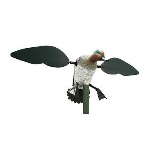 Robo Duck: Amazon.com