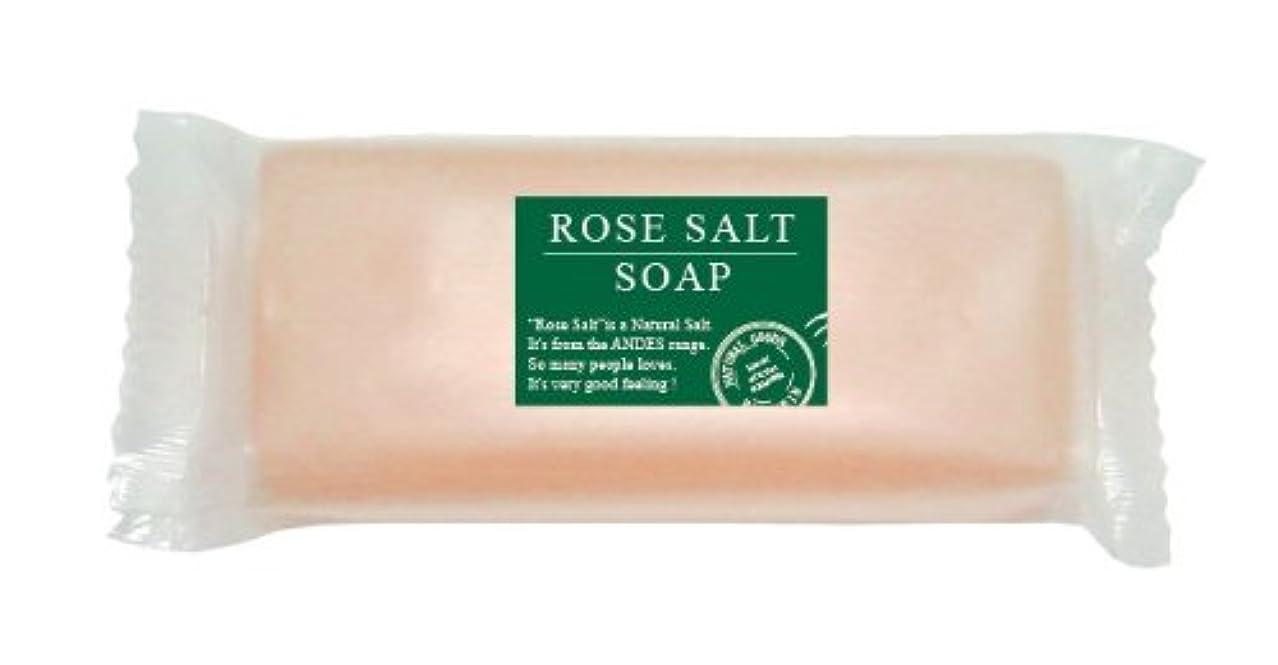 投資する動く想像するローズソルトソープ