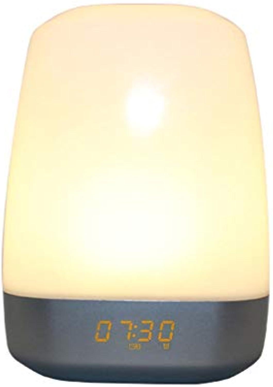 LED Digitaler Wecker mit USB-Ladeanschluss Wake Up Light Wecker für schwere Schlfer Touch Control MultiFarbe Dimmable 12-24hr Able für Schlafzimmer, Büro & Reise ( Farbe   Weiß , Größe   Free Größe )