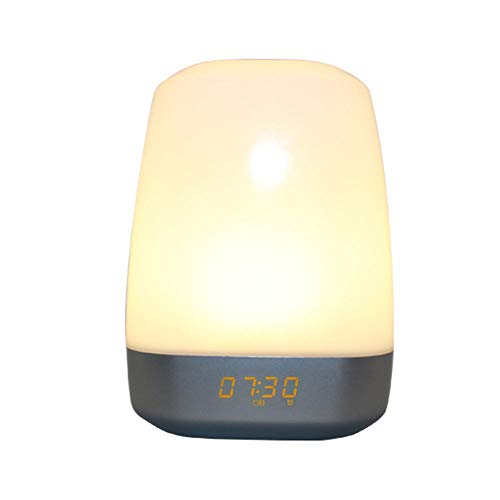 ZDAMN-Nz Digitale wekker Wake Up Light wekker voor zware slapers Touch Control Multicolor dimbaar 12-24uurs Easy voor kinderen senioren en oudere mensen wekker batterij niet getikt