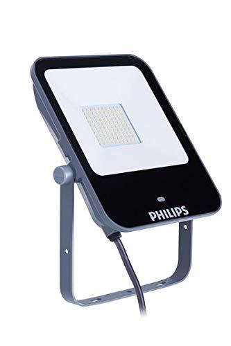 Philips Ledinaire 50 W LED Aluminio, Gris - Proyectores (50 W,...