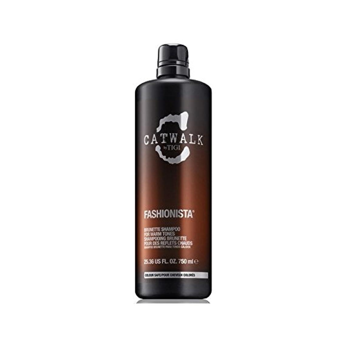 事実上間隔開発するティジーキャットウォークファッショニスタのブルネットのシャンプー(750ミリリットル) x2 - Tigi Catwalk Fashionista Brunette Shampoo (750ml) (Pack of 2) [並行輸入品]