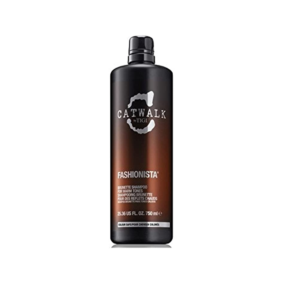 翻訳するルー甲虫ティジーキャットウォークファッショニスタのブルネットのシャンプー(750ミリリットル) x4 - Tigi Catwalk Fashionista Brunette Shampoo (750ml) (Pack of 4) [並行輸入品]