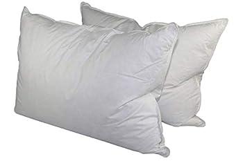Down Dreams Classic Jumbo Pillow Set of 2