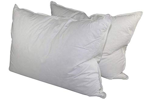 Down Dreams Classic King Pillow Set of 2