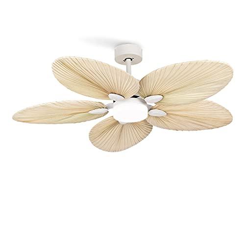 CREATE WINDLIGHT PALM DC - Ventilador de techo 40W DC Ultrasilencioso (Blanco palmera luz)