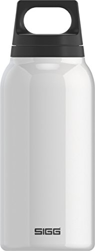 SIGG Classic Thermo 0.3-Liter Water Bottle