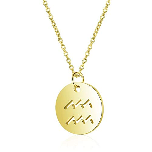 Stainless Steel 12 Constellation Pendant Necklace Round Coin Hollow Zodiac Sign Statement Clavicle Chain Necklace Unisex Jewelry Accessories (Main Stone Color : Gold Color, Metal Color : Aquarius)