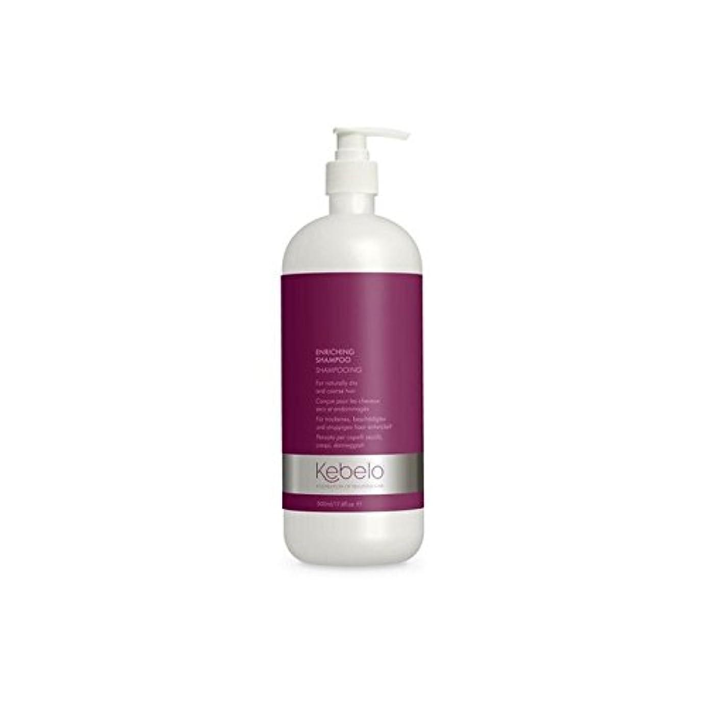 健康的もっと少なく合成シャンプー500ミリリットルを豊かに x4 - Kebelo Enriching Shampoo 500ml (Pack of 4) [並行輸入品]
