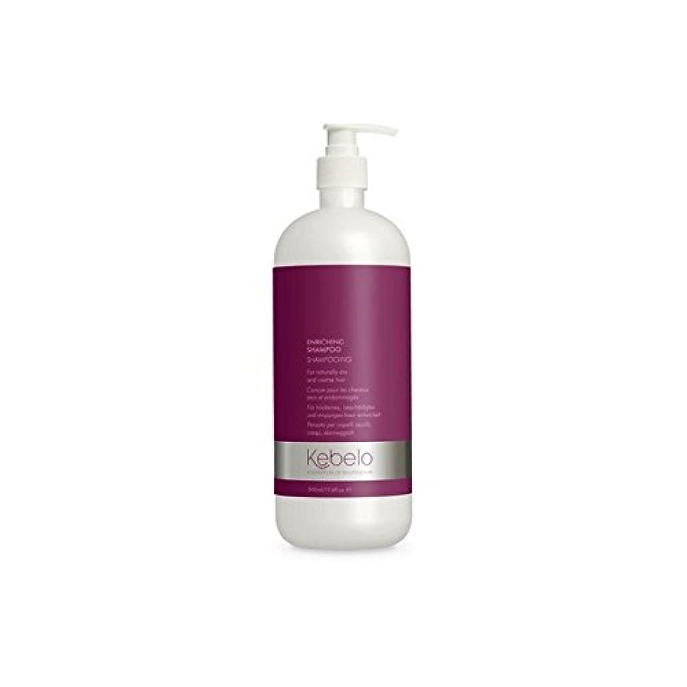 基礎理論署名シングルシャンプー500ミリリットルを豊かに x2 - Kebelo Enriching Shampoo 500ml (Pack of 2) [並行輸入品]
