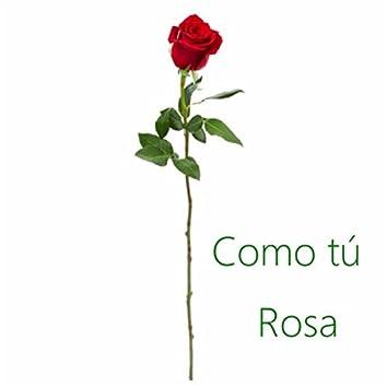 Como Tú Rosa