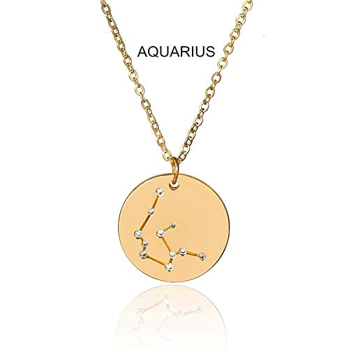 Necelack Fashion Twelve Constellations Carved Coin Necklace Statement Crystal Leo Pendant Necklace For Women Jewelry Aquariusgolden