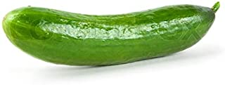 Cucumber Seeds - Straight 8 - One of The Most Popular Cucumber Varieties